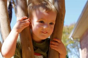 Lucas in a tree